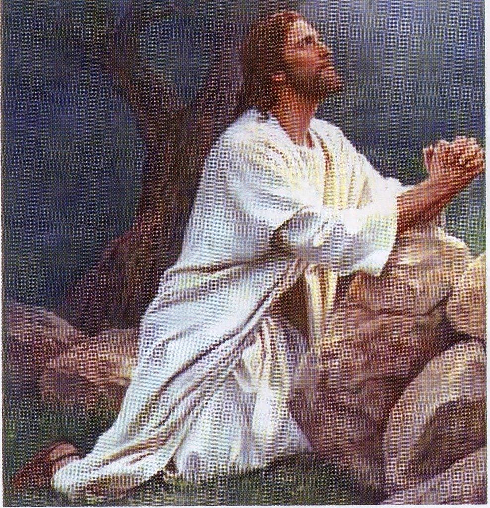Resultado de imagem para jesus monte oliveiras